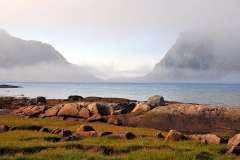 Lofoten, fog covers the sea