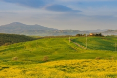 Tuscan, Val d'Orcia in the spring