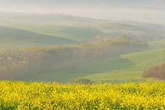 Val d'Orcia spring view