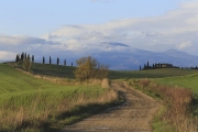 Val-d-Orcia-18