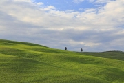 Val-d-Orcia-32