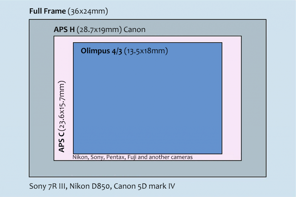 The sizes of sensors used in most current digital cameras, relative to a 35mm format