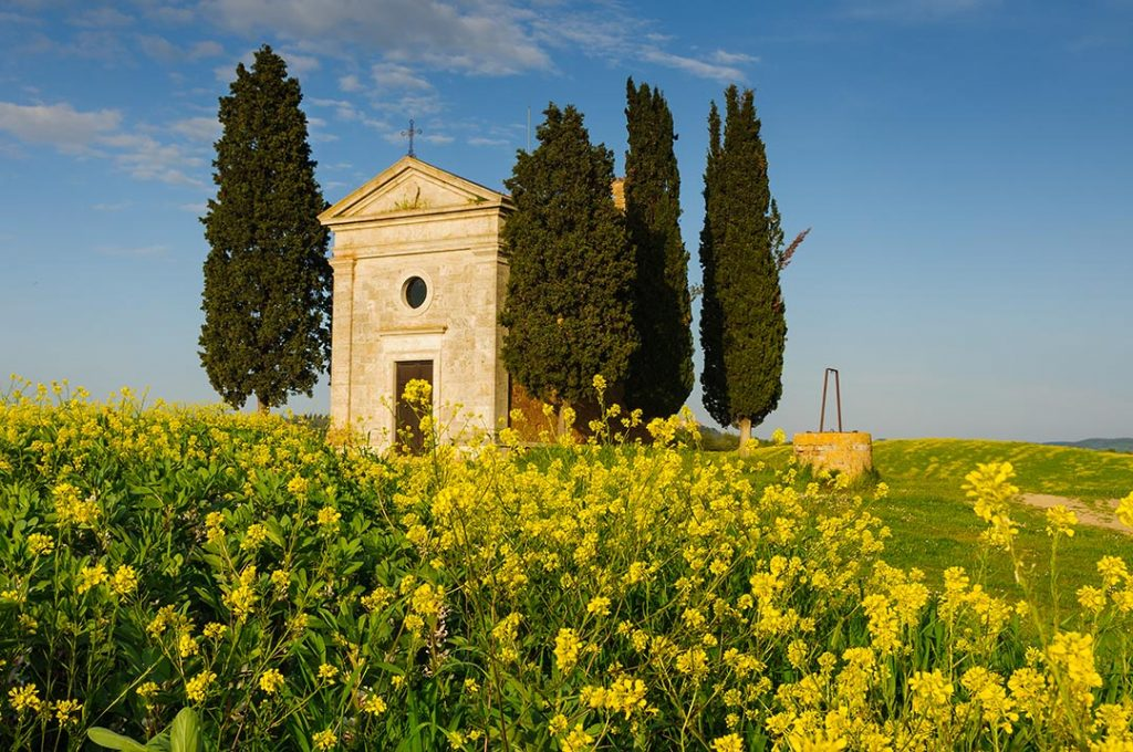 Tuscan Spring Workshops